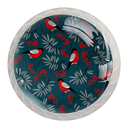 Juego de 4 pomos de armario de diseño vintage para pájaros, de cristal transparente