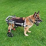 Cora Pet Scooter para Mascotas, Soporte Auxiliar Grande Silla De Ruedas Paralizada Perro Discapacitado Aleación De Aluminio Ultra Ligero Implementación Común Fácil De Usar Ajustable (20-60kg)