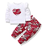 Infant Girls First Valentine's Day Outfits Baby Outfits for Girls Cute Floral Girl Clothes 2 Pieces Long Sleeve Outfits Baby Girl Clothes 9-12 Months