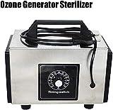 cheaaff Esterilizador generador de ozono ozonizador con Interruptor de Tiempo purificador purificador de Aire máquina de Perfume ozonizador generador de ozono O3