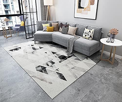 FIHO Tapis Salon Pas Cher, Tapis Boheme Tapis Interieur Lavable en Machine et Antidérapant, Tapis 120x260 cm