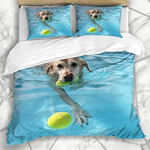 Juegos de fundas nórdicas Pooch Yellow Labrador Dog Local Public Pool Parques bucales Blue Summer Ball Lab La mejor ropa de cama de microfibra acuática con 2 fundas de almohada Fácil cuidado A
