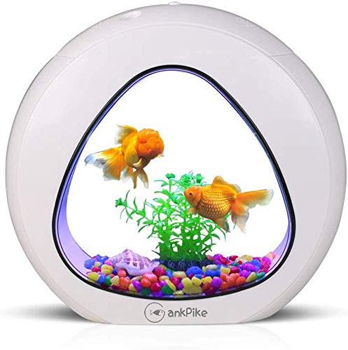 GankPike 1.5 Gallon Fish Aquarium Jellyfish Betta Fish Tank Betta Fish Bowl with Filter, Air Pump, Gravel and Decor