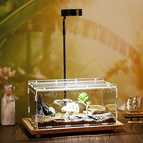 Seasons Shop Acryl Terrarium Fütterungsbox Transparent Transportboxen und Fütterungsbox Insektenzuchtbox für Reptilien Spinnen Schildkröten Schlangen, 30 * 20 * 15cm