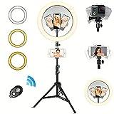 Anillo de Luz LED, 10' Aro de luz Regulable con Trípode Soporte Giratorio Control Remoto Bluetooth, 3 Modos Luz 10 Niveles Brillo para TIK Tok Live, Selfie, Youtube, Maquillaje(Anillo luz 10')