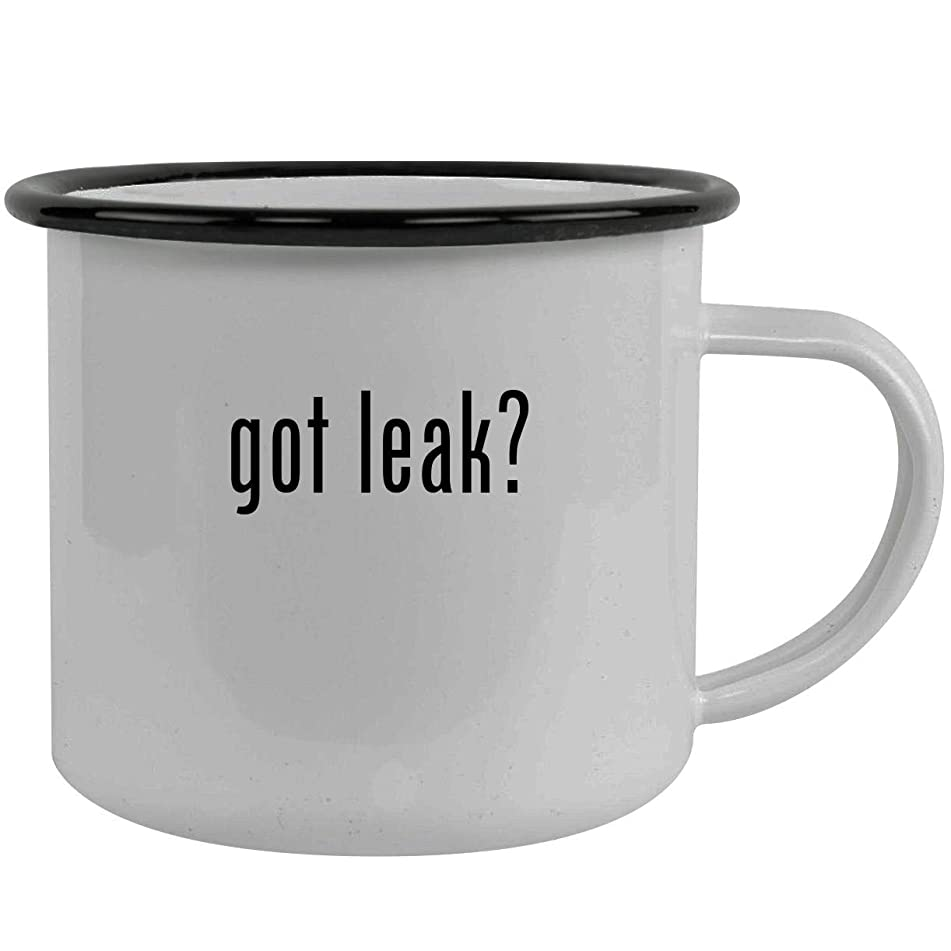 got leak? - Stainless Steel 12oz Camping Mug, Black