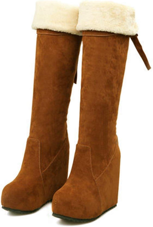 Hoxekle Knee High Winter Long Boot Hidden Super High 12cm Faux Suede Plush Fur Zipper Platform Women Long Boots