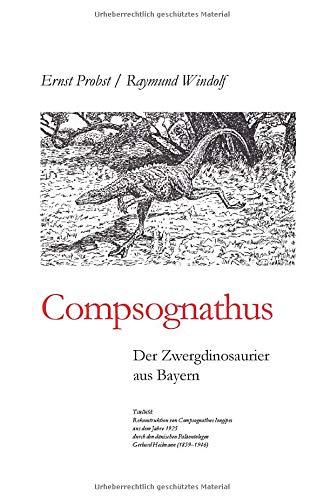 Compsognathus: Der Zwergdinosaurier aus Bayern