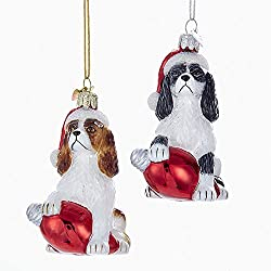 Kurt AdlerガラスNoble Gems 2 Assorted Cavalier King Charlesクリスマス装飾[KURT ADLER/Amazon]
