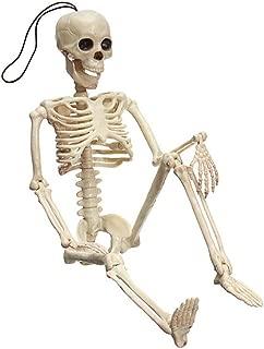 IAMCOOL Halloween Skeleton,Creepy Human Ossature Skull Figurine Scary Halloween Ossature Halloween Skeleton Decorations White