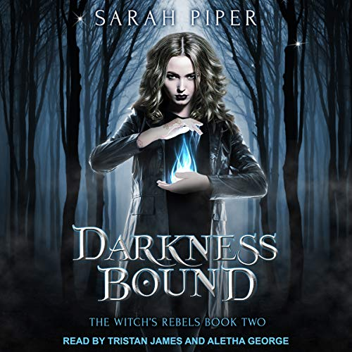 Darkness Bound: A Reverse Harem Paranormal Romance audiobook cover art