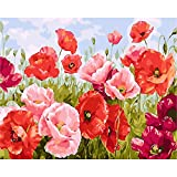 BAISITE DIY Paint by Numbers for Adults,16'Wx20'L Canvas Pictures Drawing Paintwork with Paintbrushes,Acrylic Pigment-Poppies Flowers (Without Frame) BSC001