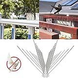 Zoom IMG-1 natee dissuasori per piccioni 3