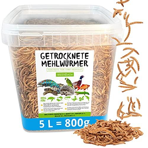 MeerBach Animal Mehlwürmer getrocknet • 5 Liter (800g) Futtermittel im Eimer • der proteinreiche Snack für Wildvögel, Fische, Reptilien, Schildkröten und Igel