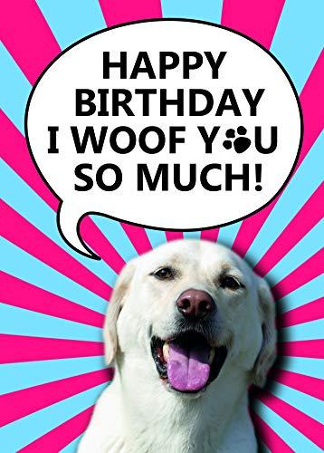 Schattige verjaardagskaart voor een hondenliefhebber met Golden Labrador Retriever | A5 Silk 350 GSM