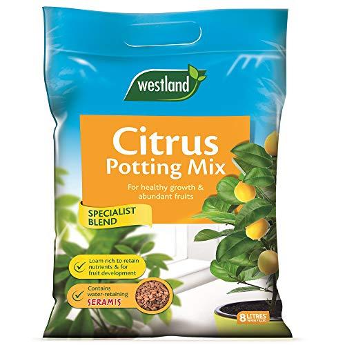 Westland Citrus Potting Compost Mix and Enriched with Seramis, 8 L