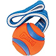 ChuckIt! Ultra Tug Dog Toy, Medium
