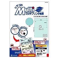 ヒサゴ マルチプリンタ帳票 B5地紋2面 (100枚) BP2089