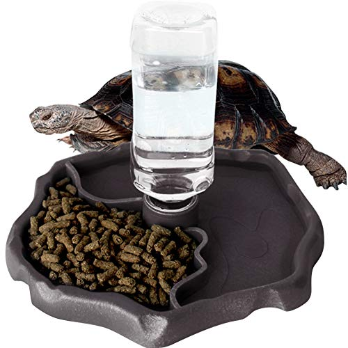 WINGOFFLY Automatic Reptile Feeders Waterer Automatic-refilling Turtle Water Dispenser Bottle Tortoise Food Water Bowl Feeding Dish for Lizards Coffee