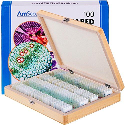 AmScope - Set di 100 vetrini preparati per microscopio, in vetro, Set B, Prepared Biology Slide set - PS100B