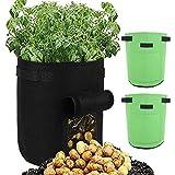 Socobeta Bolsa de siembra 2 unidades de fieltro flor creciente bolsa de cultivo de plantas contenedor de cultivo patio vegetal cultivo para jardín en el hogar (verde)