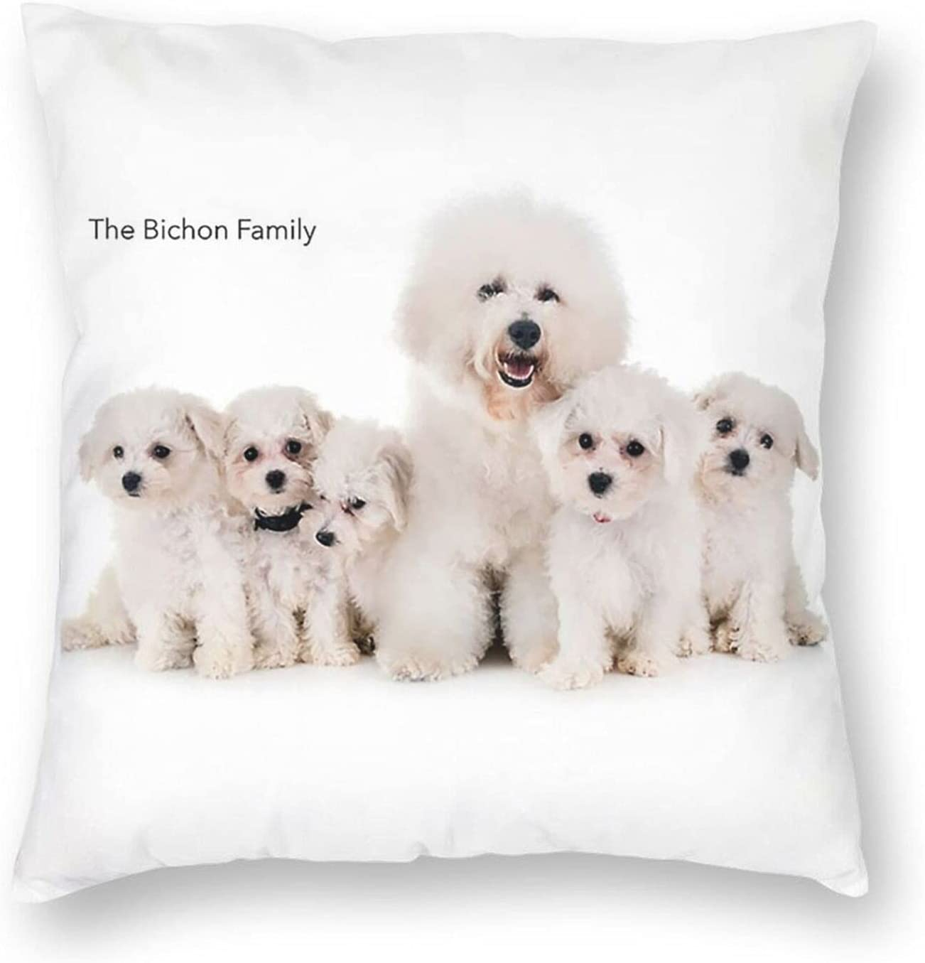 THGFH Sale special price Square Pillow- A Variety of Sofa 2021 Pillow P Patterns Cushion
