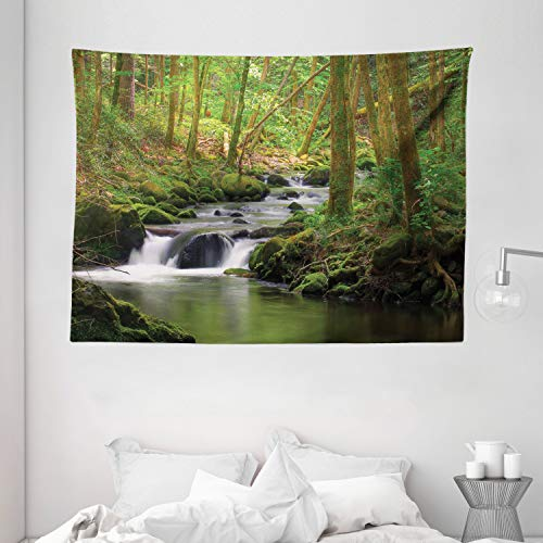 """Ambesonne Nature Tapestry, Stream Flowing in Forest Mossy Rocks Tree Foliage Splash Summertime Hiking, Wide Wall Hanging for Bedroom Living Room Dorm, 80"""" X 60"""", Green Brown"""