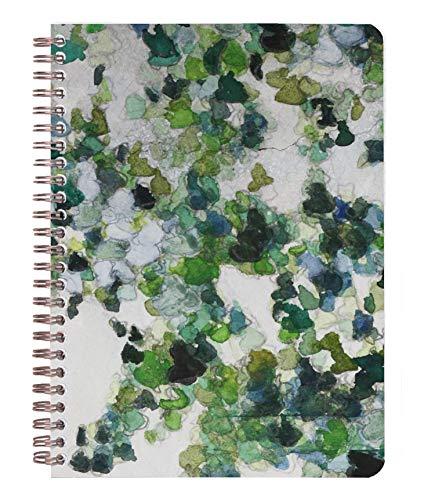 Clairefontaine 115506C – Een Hedera spiraalblok, 120 pagina's, 14,8 x 21 cm, 90 g, gelinieerd, met 3 gekleurde vakken, plafond, motief willekeurig geselecteerd