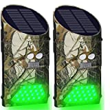 Lilbees Solar Hog Feeder Light Motion Activated Green Hunting Lights for Predator Coyote Pig Varmint Deer Hog Night Hunting(G300)(Pack of 2)