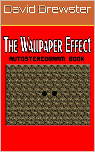 The Wallpaper Effect Autostereogram Book: The Magic Of Depth Perception (English Edition)