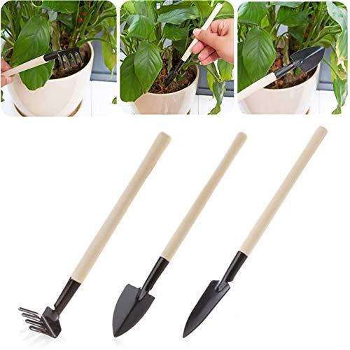 ADAFA 3 unids/Set Mini Herramientas de jardinería Mango de Madera Duradero Plantas en macetas de Acero Inoxidable Pala rastrillo Pala para Plantas en macetas de Flores