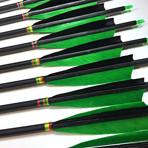 500 Spine Arrow 28 Inch Arrow Target Practice Arrow Hunting Arrow Carbon Arrows Compound Bow Recurve Bow Adult Youth Archery Indoor Outdoor Shooting Field Tip
