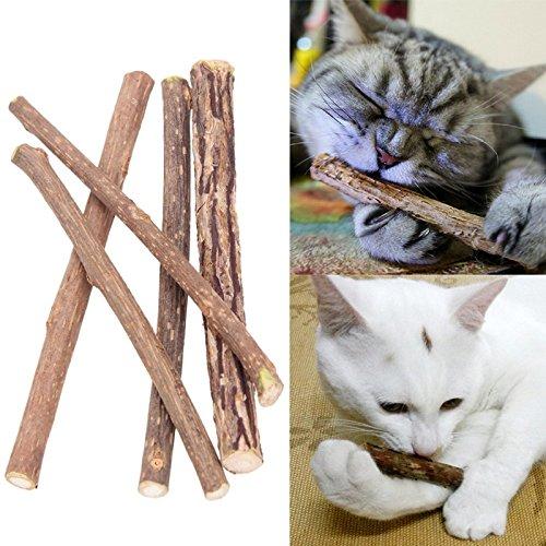 8 Stück Matatabi Katzen Kauhölzer Catnip Snacks Sticks Katzenminze Zähne Gesund Hygiene Zahnpflege Natur unterstützen die Natürliche Zahnpflege helfen spielerisch bei Mundgeruch & Zahnstein (10)