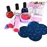 DIY Kit Nail Acrylique Poudre/liquide/colle/Forms/Brosse avec outils complète