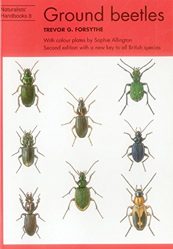 Forsythe, T: Ground beetles (Naturalists' Handbooks, Band 8)
