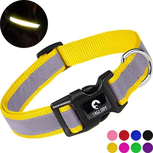 Taglory Collar Perro Reflectante, para Perros Medianos, Collar Ajustable y Suave para Caminar Correr, Amarillo