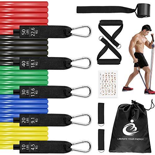 Bandas de Resistencia Fitness,Bandas Elasticas Musculacion 12 Pack con 5 Tubos,Manijas y...