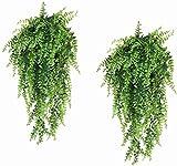 TongN Planta Artificial Helecho Artificial Colgante Planta Artificial Vid Verde Exterior protección plástico Planta-2 Piezas