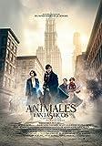 Animales Fantásticos Y Donde Encontrarlos [DVD]