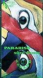 PARADISE 歌詞