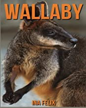 the wallaby 3