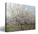 Cuadro Canvas El Huerto Blanco de Vincent Willem Van Gogh