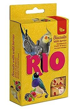 RIO Bisckits pour Toutes Les espèces d'oiseaux aux Baies des forêts 35 g