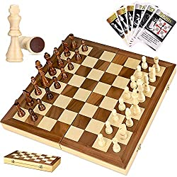 which is the best learning chess set in the world