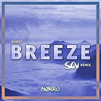 Breeze (SGV Remix)