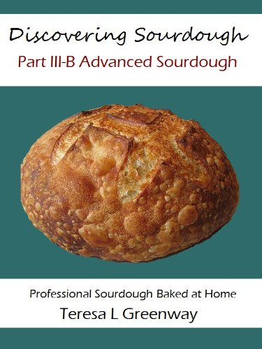 Discovering Sourdough Part III-B Advanced Sourdough