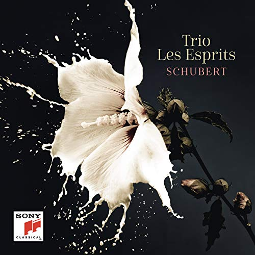 Franz Schubert: Piano Trios, Arpeggione & Fantasia