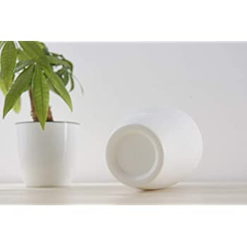 Pack of 3, self-Watering, White Plastic Plant pots, Medium 6 inch