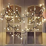 Curtain Lights Indoor Outdoor, 8.3ft 8 Modes 72 Led Globe String Lights Plug in, Window Lights for Patio Garden Wedding Party Bookshelf, Warm White