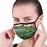 1017 Hermosa sandía Tallada Estudiantes tailandeses The Arts Capaz de máscara Media Cara Boca-Mufla Moda Motocicleta Anti Polvo Disfraz Máscara de Moda